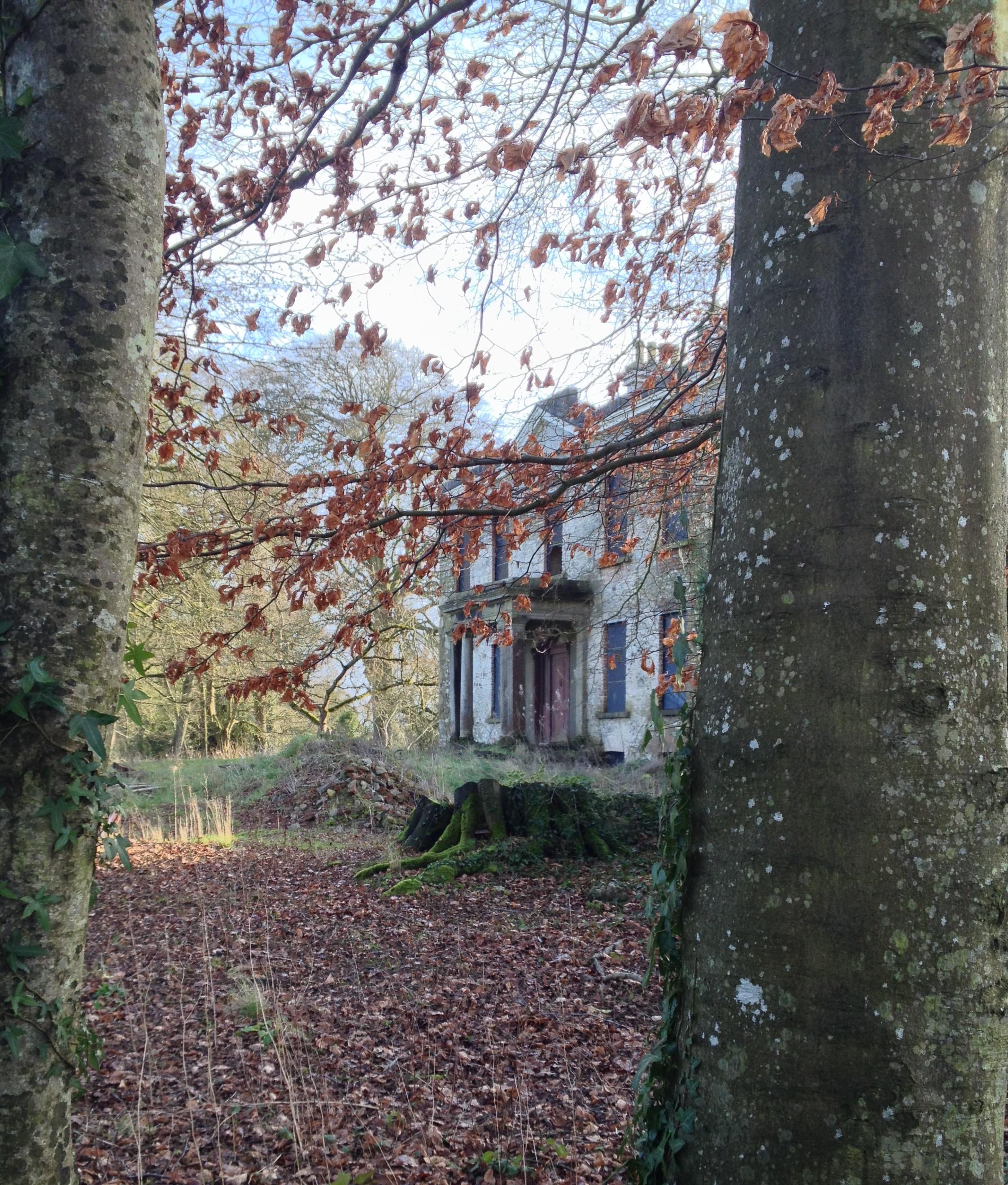 Country House 171 The Irish Aesthete 171 Page 5
