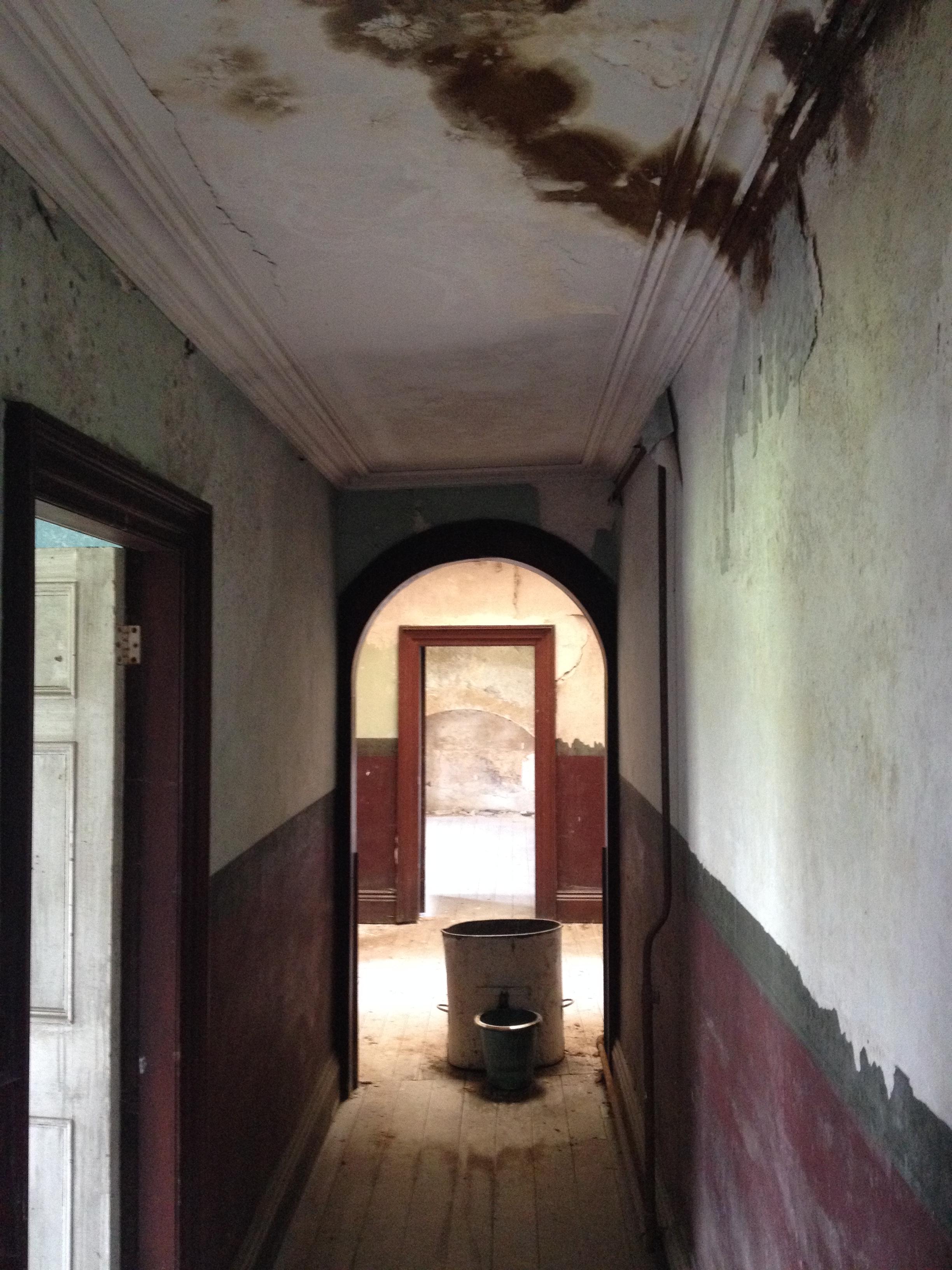 img_9454 & Beyond the Green Baize Door « The Irish Aesthete